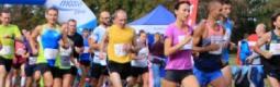 Poniżej prezentujemy oficjalne wyniki oraz galerię zdjęć z IX Półmaratonu Leśnego BAŻANT 2018.